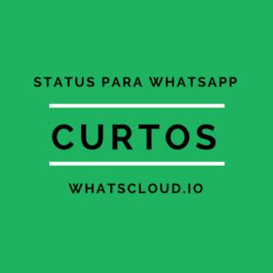 status curtos